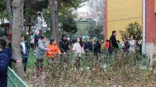 Organik Okul Projesi
