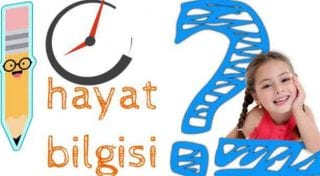 2.SINIF HAYAT BİLGİSİ 10 SORULUK  GENEL TEST