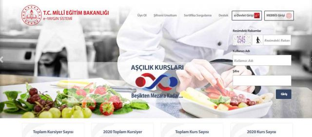 e-yaygin anasayfa