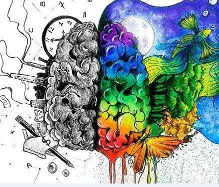 beynimiz en önemli